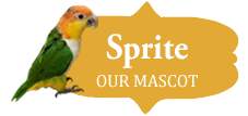 Sprite the Parrot, Luther Woods Mascot